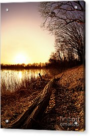 Sunset At The Lake Acrylic Print by Daniel Heine