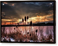 Acrylic Print featuring the photograph Sunset At The Pond 4 by Michaela Preston