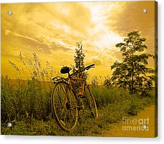 Sunset Biking Acrylic Print by Nina Silver