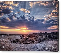 Acrylic Print featuring the photograph Sunset Bird by John Swartz