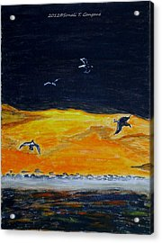 Sunset Birds Acrylic Print by Sonali Gangane