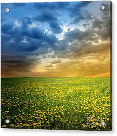 Acrylic Print featuring the photograph Sunset by Boon Mee