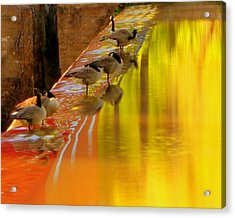 Acrylic Print featuring the photograph Sunset Club by Chris Fraser
