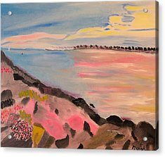 Acrylic Print featuring the painting Sunset Contrasts by Meryl Goudey