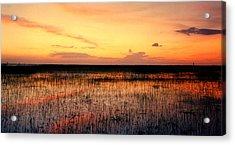 Sunset. East Lake Toho. Acrylic Print