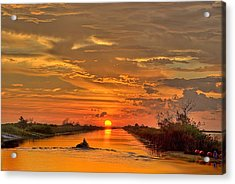 Sunset Everglades Acrylic Print by Bob Mulligan