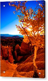 Sunset Fall Acrylic Print by Chad Dutson