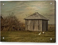 Sunset Farm Acrylic Print