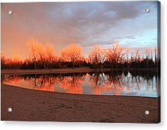 Sunset Fire Acrylic Print by Alicia Knust