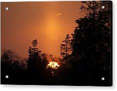 Sunset Flare Acrylic Print by Greg Vizzi