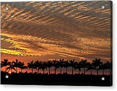 Sunset Florida Acrylic Print