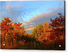 Acrylic Print featuring the photograph Sunset Glow by Kathryn Meyer