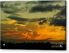 Sunset Glow Acrylic Print by Lynda Dawson-Youngclaus
