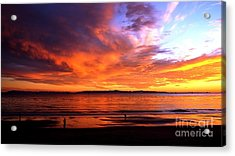 Acrylic Print featuring the photograph Sunset Glow by Sue Halstenberg