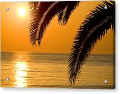 Sunset Golden Color With Palm Acrylic Print