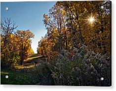 Sunset Graze Acrylic Print by Jeanne Sheridan