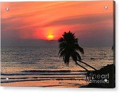 Sunset   Gulf Of Mexico   Naples  Florida Acrylic Print