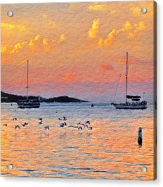 Sunset Harbor With Birds - Square Acrylic Print