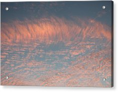 Acrylic Print featuring the photograph Sunset In Gainesville by Lorna Maza
