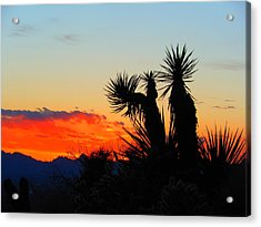 Sunset In Golden Valley Acrylic Print