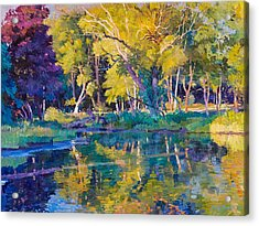 Sunset In Hinsdale Park Acrylic Print