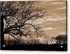 Sunset In Sepia C  Acrylic Print