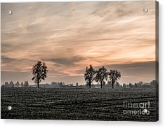 Sunset In The Country - Orange Acrylic Print by Hannes Cmarits