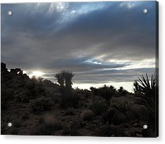Sunset In The Desert Acrylic Print by James Welch