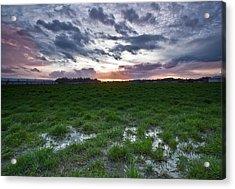 Sunset In The Swamp Acrylic Print by Eti Reid