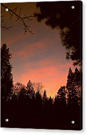 Sunset In Winter Acrylic Print