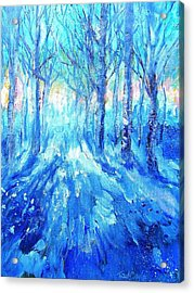 Sunset In A Winter Wood  Acrylic Print by Trudi Doyle