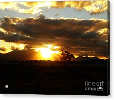 Sunset In Worcerster Acrylic Print by Willinda Swart
