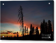 Sunset In Yosemite Acrylic Print