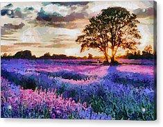 Sunset Lavender Field Acrylic Print by Georgi Dimitrov