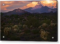 Sunset Lit Cactus Over Four Peaks Acrylic Print
