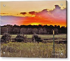 Sunset Meadow Acrylic Print by Marilyn Smith