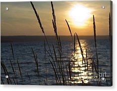 Sunset On Cayuga Lake Acrylic Print