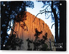 Sunset On Devils Tower National Monument Wyoming Usa Diffuse Glow Acrylic Print by Shawn O'Brien