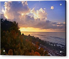 Sunset On Little Cayman Acrylic Print by Stephen Anderson