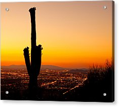 Sunset On Phoenix With Saguaro Cactus Acrylic Print by Susan Schmitz