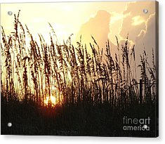 Sunset On The Dunes St. Augustine Acrylic Print