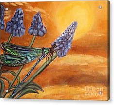Acrylic Print featuring the painting Summer Sunset Over A Dragonfly by Kimberlee Baxter