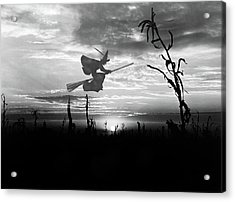 Sunset Over Cornfield With Silhouette Acrylic Print