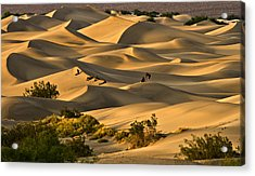 Acrylic Print featuring the photograph Sunset Over Mesquite Flat Dunes by Gigi Ebert
