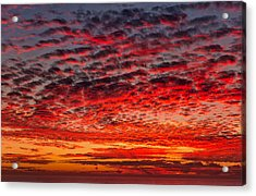 Sunset Over Saunder's Reef Acrylic Print