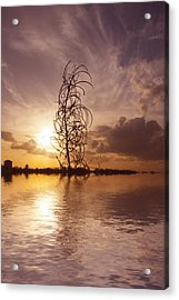 Sunset Over The Lake  Acrylic Print by David French