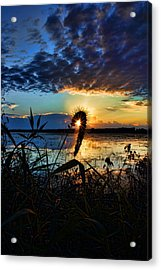 Sunset Over The Refuge Acrylic Print