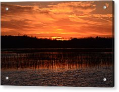 Sunset Over Tiny Marsh Acrylic Print by David Porteus