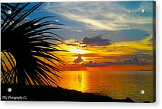 Sunset Palm Acrylic Print