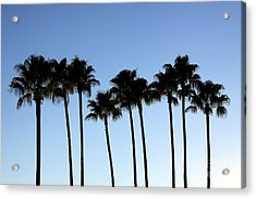 Acrylic Print featuring the photograph Sunset Palms by Chris Thomas